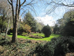 17-Merrion Square2